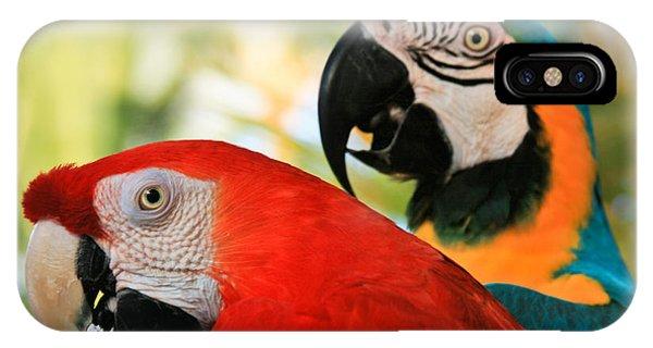 Macaw iPhone Case - Lele by Sharon Mau