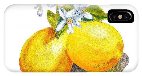 Lemon iPhone Case - Lemons And Blossoms by Irina Sztukowski