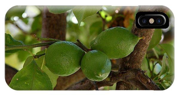 Lemons Trio IPhone Case
