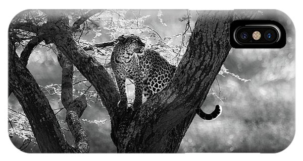 Africa iPhone X Case - Leopard by Bjorn Persson
