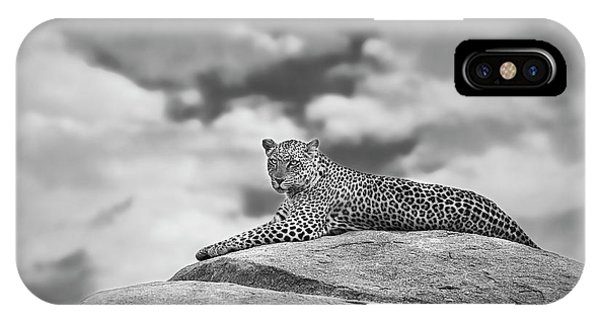 Boulder iPhone Case - Leopard On A Kopje by Mario Moreno