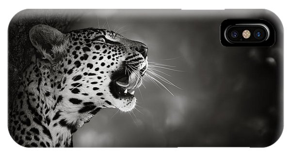 Monochrome iPhone Case - Leopard Portrait by Johan Swanepoel