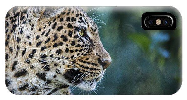 Leopard's Look IPhone Case