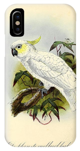 Cockatoo iPhone Case - Lesser Cockatoo by Dreyer Wildlife Print Collections