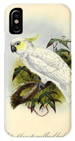 Lesser Cockatoo IPhone Case