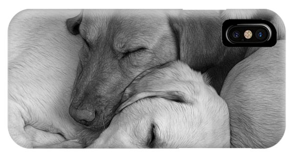Let Sleeping Dogs Lie IPhone Case