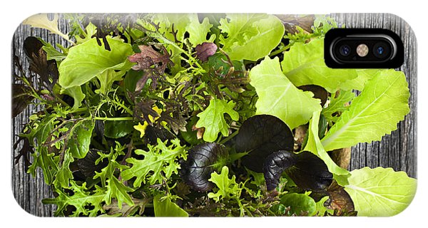 Lettuce Seedlings IPhone Case