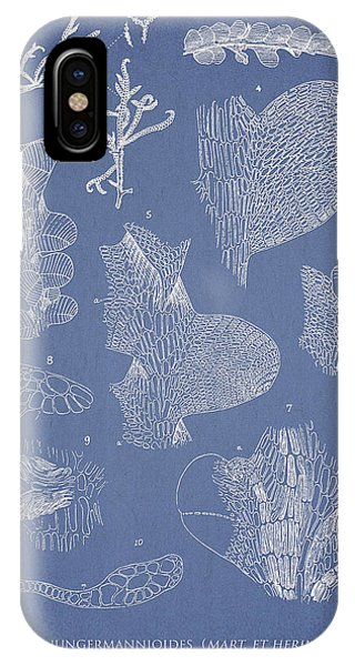 Alga iPhone X Case - Leveillea Jungermannioides by Aged Pixel