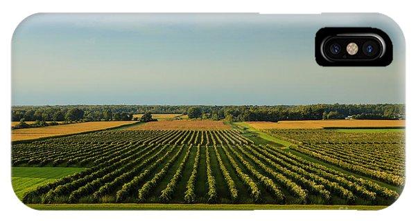 Lewiston Summer Vineyards IPhone Case