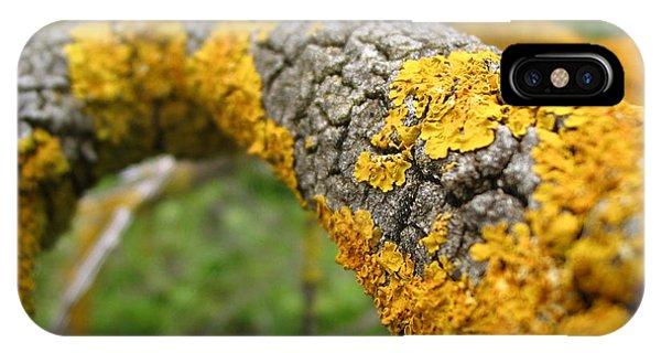 Lichen On Branch IPhone Case