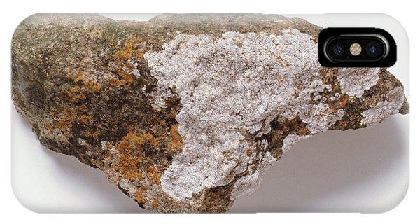 Lichen On Rock Phone Case by Dorling Kindersley/uig
