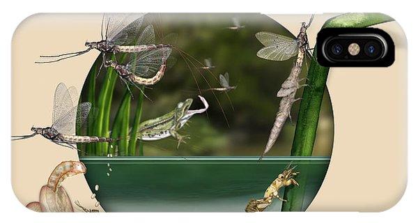 Life Cycle Of Mayfly Ephemera Danica - Mouche De Mai - Zyklus Eintagsfliege - Stock Illustration - Stock Image IPhone Case