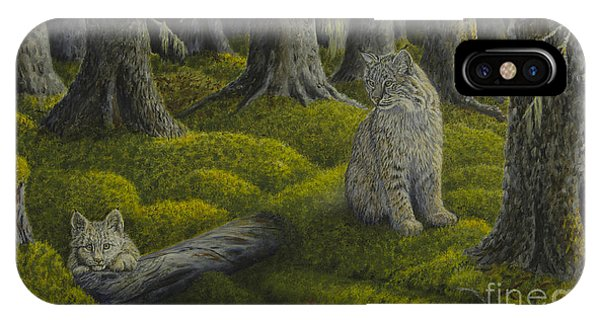 Bobcats iPhone Case - Life In The Woodland by Veikko Suikkanen