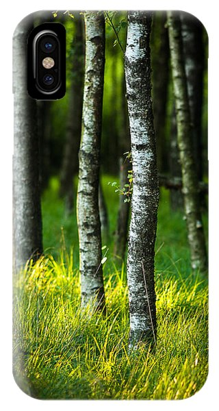 Life Is A Birch IPhone Case