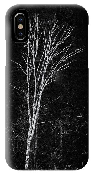 IPhone Case featuring the photograph Life's A Birch No.2 by Mark Myhaver