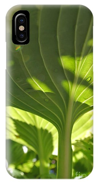 Light Above IPhone Case