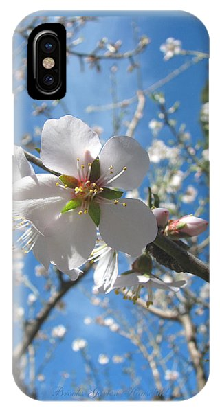 Like Stars In The Sky - Almond Blossoms Of Spring IPhone Case