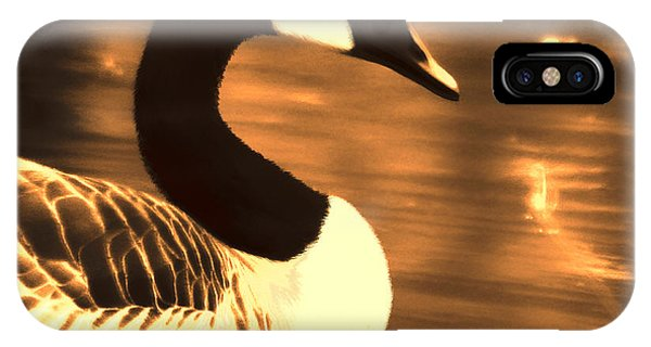 Lila Goose The Pond Queen Sepia IPhone Case