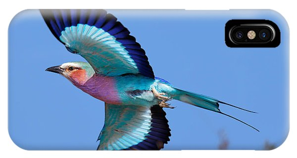 Horizontal iPhone Case - Lilac-breasted Roller In Flight by Johan Swanepoel