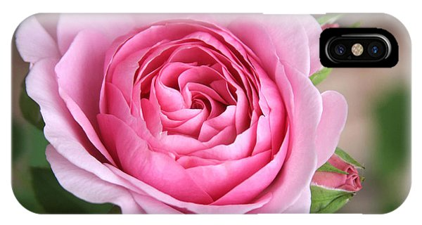 Lilac Rose Phone Case by CarolLMiller Photography