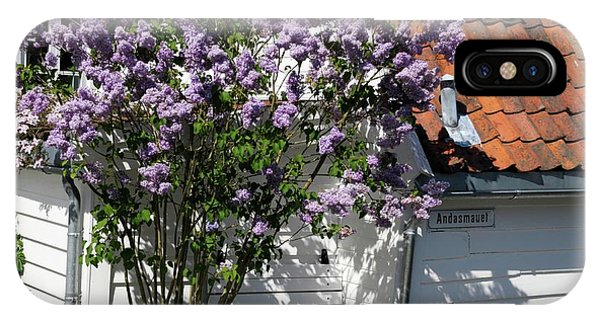 Deciduous iPhone Case - Lilac (syringa) by Anthony Cooper/science Photo Library