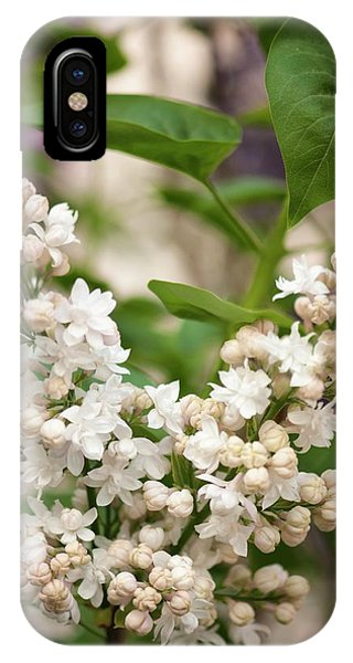 Lilac (syringa Vulgaris 'beauty Of Moscow') In Flower Phone Case by Maria Mosolova/science Photo Library