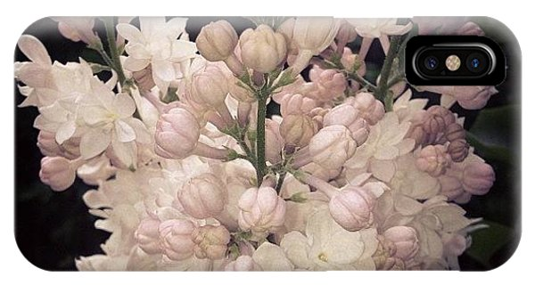 Lilacs Are Blooming IPhone Case