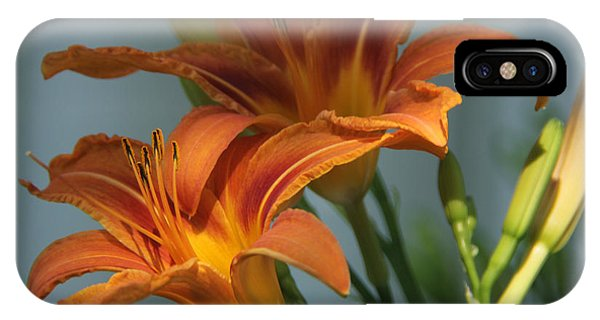 Lilies 1 IPhone Case