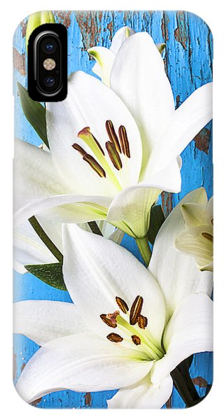 Stamen iPhone Case - Lilies Against Blue Wall by Garry Gay