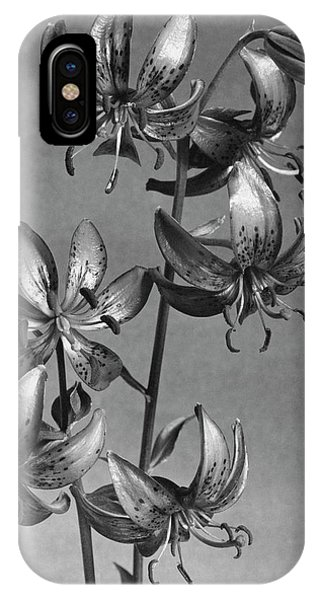 Lilium Hansonii IPhone Case
