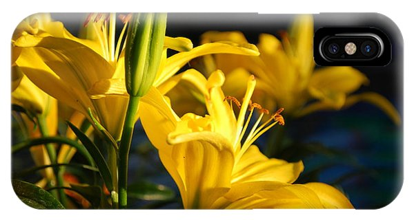 Lillies Of Gold Phone Case by Billie Colson
