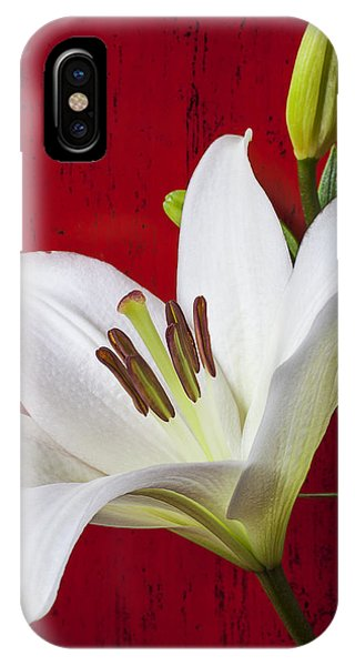 Lily Against Red Wall IPhone Case