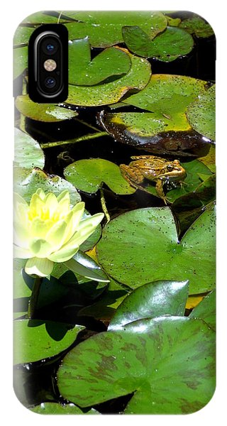 Lily And Amphibian Friend IPhone Case