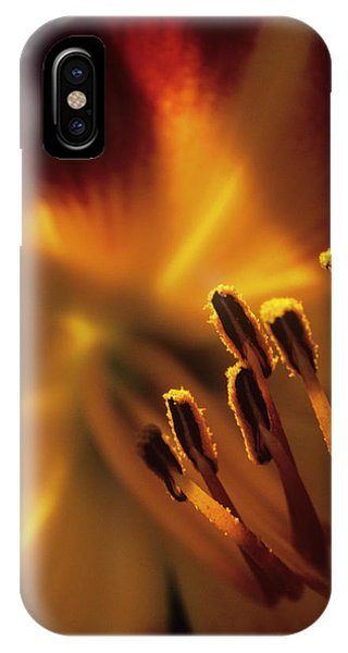 Stamen iPhone Case - Lily Flower Stamens by Dr. John Brackenbury/science Photo Library