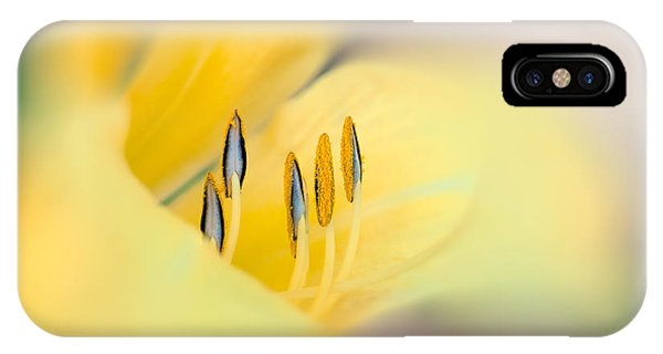 Uplift iPhone Case - Lily Impressions by Bob Orsillo