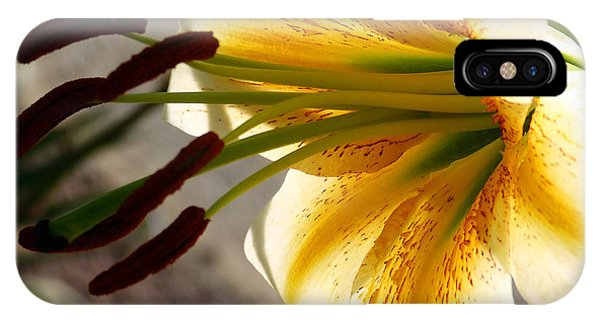 Lily IPhone Case