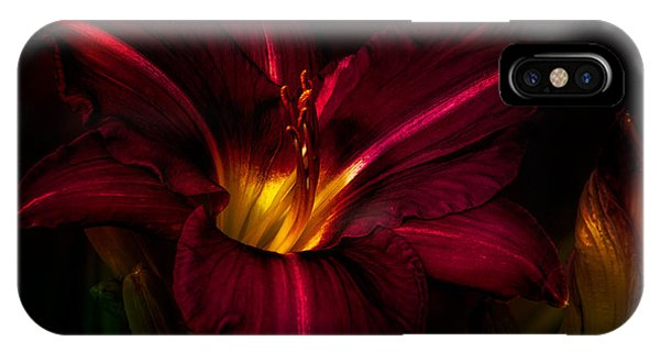 Fall Flowers iPhone Case - Lily Number Nine by Bob Orsillo