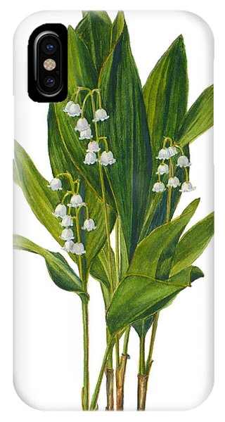 Lily Of The Valley - Convallaria Majalis IPhone Case