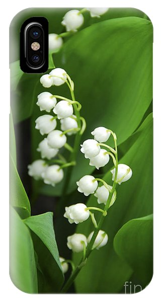 Blossoms iPhone Case - Lily-of-the-valley  by Elena Elisseeva