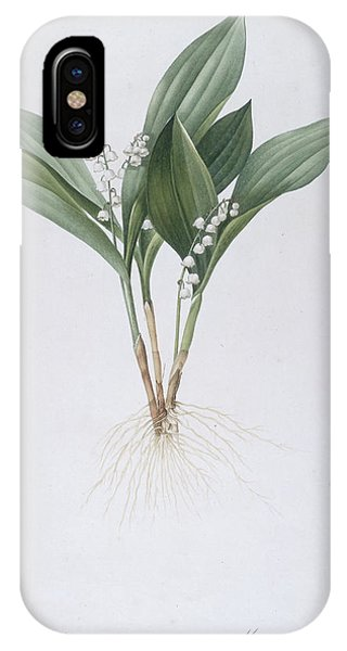 Redoute iPhone Case - Lily Of The Valley by Pierre Joseph Redoute
