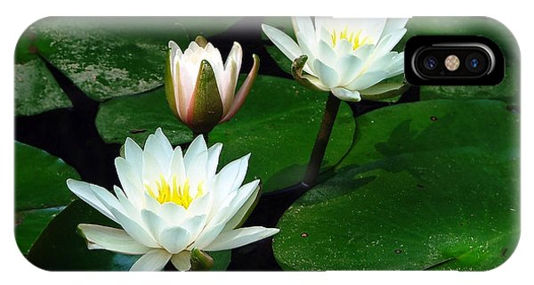 Lillie iPhone Case - Lily Pad Flowers  by Jt PhotoDesign