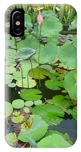 Lily Pad Phone Case by Jack Edson Adams