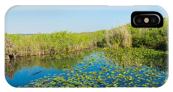Anhinga iPhone Case - Lily Pads In The Lake, Anhinga Trail by Panoramic Images