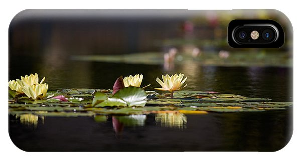 Pond iPhone Case - Lily Pond by Peter Tellone