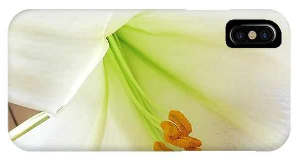 Lily Stamen IPhone Case