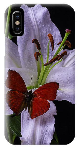 Stamen iPhone Case - Lily With Red Butterfly by Garry Gay