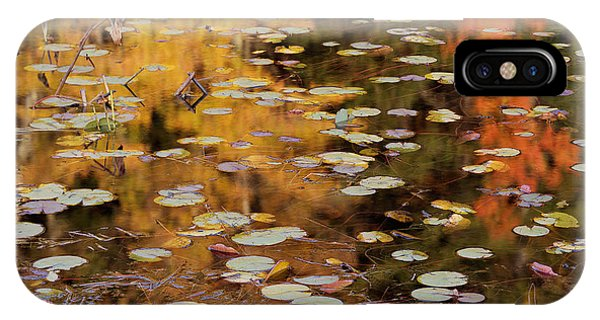 Lilypads And Reflection-h IPhone Case
