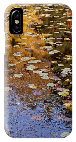 Lilypads And Reflection IPhone Case