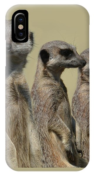 Line Dancing Meerkats IPhone Case
