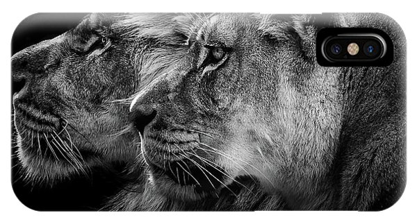 Lions iPhone Case - Lion And  Lioness Portrait by Laurent Lothare Dambreville